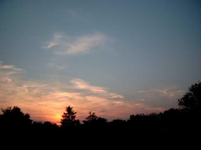 Finkenkruger skies 072